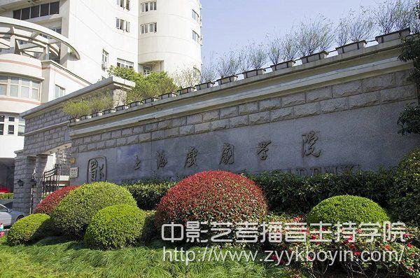 上海戏剧学院标志.jpg